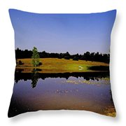 Night Scape Pond Throw Pillow
