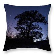 night sky and trees in Molino Canyon Mount Lemmon AZ Throw Pillow