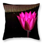 Night Time Lily Monet Throw Pillow