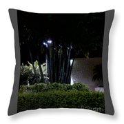 Night Time Psl Throw Pillow
