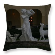 Night View Of Fountain In Front Of The Arlington Hotel, Arkansas, Ar Throw Pillow