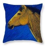 Night Wind Throw Pillow
