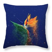Nightbird Throw Pillow by Kenneth Armand Johnson