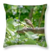 Nightingale In The Wood Throw Pillow