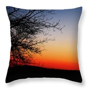Nights Beauty Throw Pillow