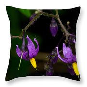 Nightshade Wildflowers #5616 Throw Pillow