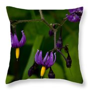 Nightshade Wildflowers #5633 Throw Pillow