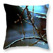 Nighttime In The Garden Throw Pillow