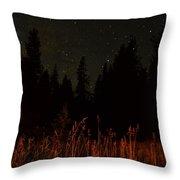 Nighttime Meadow  Throw Pillow