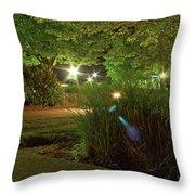 Nighttime Path Throw Pillow