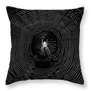 Nighttime Spider And Web Throw Pillow