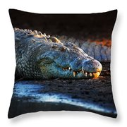 Nile Crocodile On Riverbank-1 Throw Pillow