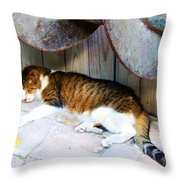 Nine Lives Throw Pillow by Debbi Granruth
