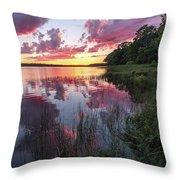 The Nip Sunset Throw Pillow