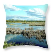 Nisqually Marsh Throw Pillow