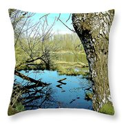 Nisqually Pond Throw Pillow