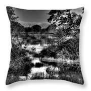 Nisqually Ponds Throw Pillow