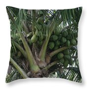 Niu Ola Hiki Coconut Palm Throw Pillow