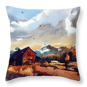 Niwot Colorado 3 Throw Pillow