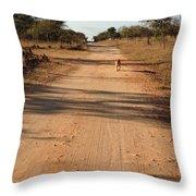 Nkulu Throw Pillow