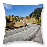 Nm Hwy 64 In The San Juan Mountains Throw Pillow