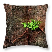 No Barriers To Growth Throw Pillow