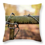 No Entry Throw Pillow by Nick Bywater