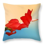 No Fear Of Flying Throw Pillow