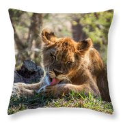 Lion Cub Lick Throw Pillow