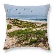 Carpinteria State Beach Throw Pillow