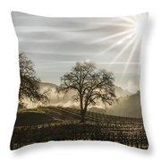 Wine Country Sunrise Throw Pillow