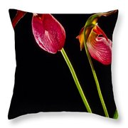 No Lady Slipper Was Harmed Throw Pillow