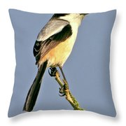 Philippine Falconet Throw Pillow