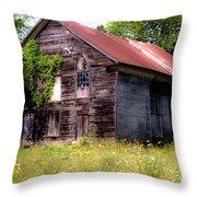 No One Home Throw Pillow