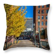 No One Occupying Wall Street Throw Pillow