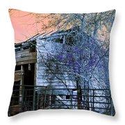 No Ordinary Barn Throw Pillow
