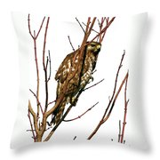 No Place To Hide Throw Pillow