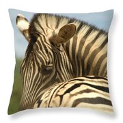 No Tailgaiting Throw Pillow