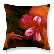 No Title002 Throw Pillow