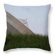 Noaa Satelite Throw Pillow