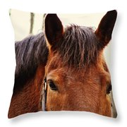 Noble Companion Throw Pillow