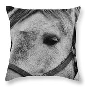 Noble Horse Throw Pillow