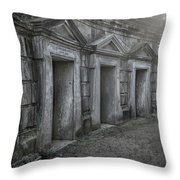 Nocturnal Alley Throw Pillow