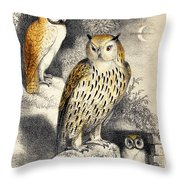 Nocturnal Scene With Three Owls Throw Pillow