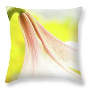 Nodding  Throw Pillow