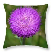 Nodding Thistle Close-up Throw Pillow