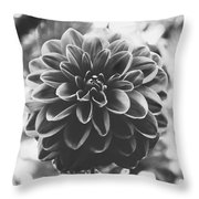 Noir Dahlia  Throw Pillow