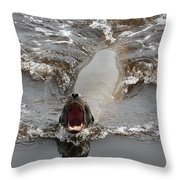 Noisy Sea Lion Throw Pillow