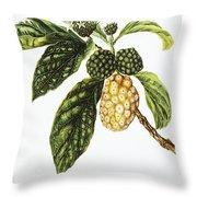 Noni Fruit Art Throw Pillow