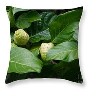 Noni Throw Pillow